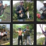 Umpan Mancing Ikan Nila di Danau