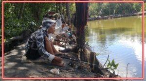 Umpan Jitu Ikan Tombro Harian Racikan dan Alami