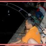 Umpan Ikan Tombro Malam Hari yang Belum Diketahui Banyak Orang