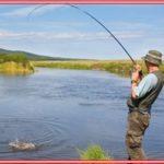 Cara Membuat Umpan Ikan Gabus Racikan Sendiri