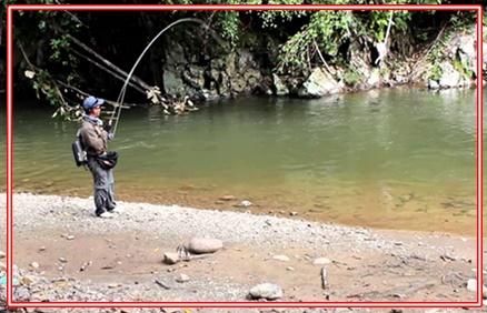 Cara Mancing Casting di Sungai Bagi Pemula