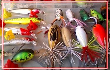 Harga Umpan Tiruan Ikan Gabus Berapa?